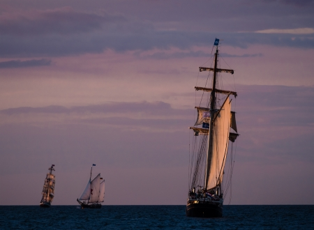 Hanseatic Sail 2012  in Rostock  Germany