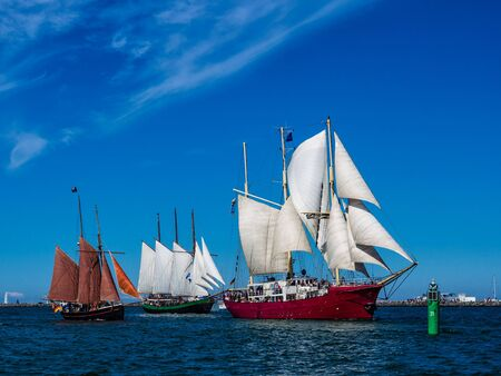 Hanseatic Sail 2012  in Rostock  Germany