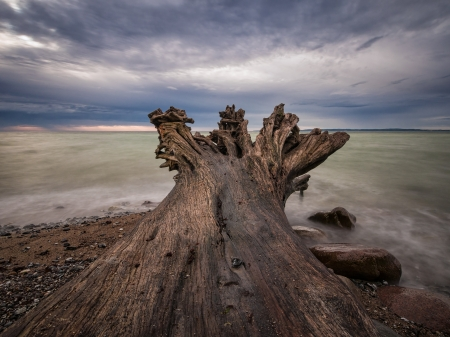 waterside: On shore of the Baltic Sea on the island Ruegen  Germany