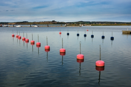 Buoys in the port of Thiessow on the island Ruegen  Germany   photo