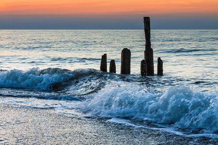 groynes: Groynes on shore of the Baltic Sea