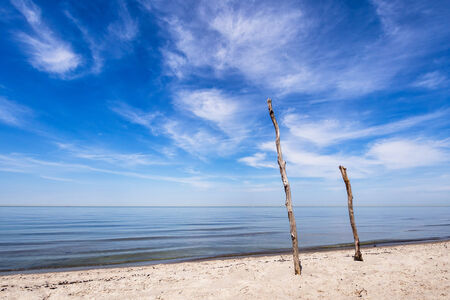 On shore of the Baltic Sea  photo