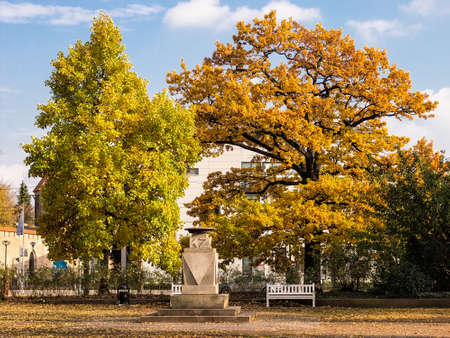 rostock: Autumnal colored leaves in Rostock (Germany).