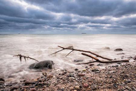cloud drift: Drift wood on shore of the Baltic Sea. Stock Photo