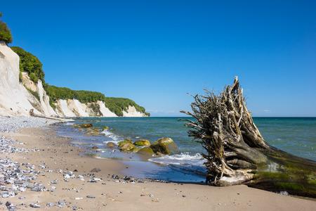 sea cliff: Chalk cliff on the island Ruegen in Germany. Stock Photo