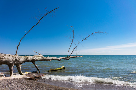 sea cliff: Baltic Sea coast on the island Ruegen in Germany. Stock Photo