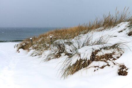 Baltic Sea coast in Ahrenshoop (Germany) in winter time.