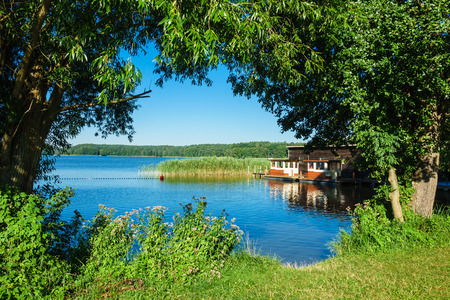 Landscape on a lake with trees and reeds. Stock Photo