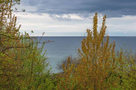 Landscape on shore of the Baltic Sea. Stock Photo