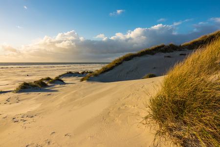 Dunes on the North Sea coast on the island Amrum, Germany.