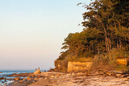 Evening on shore of the Baltic Sea. Stock Photo