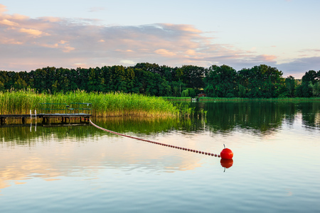 Landscape on a lake with trees and reeds. Standard-Bild - 112529391