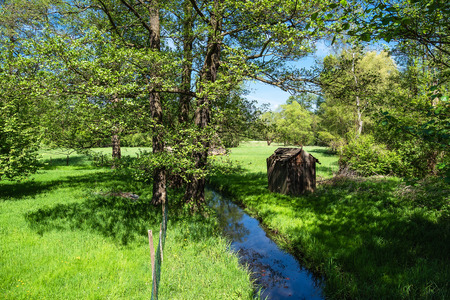 Landscape with creek in the Spreewald area, Germany. Stock Photo