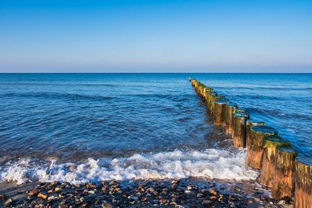 Baltic Sea coast in Graal Mueritz, Germany. Standard-Bild - 117413907