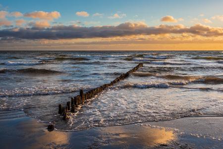 Baltic Sea coast on the island Moen in Denmark. Standard-Bild - 117426342