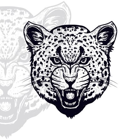 leopard head furious  vector illustration, editable and detailed