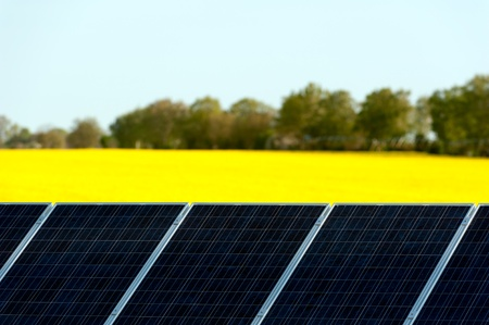 eco sensitive: Solar panels in a rapeseed field Stock Photo