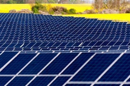 Solar panels in a rapeseed field Standard-Bild