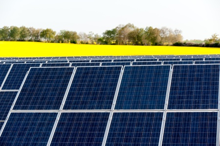 Solar panels in a rapeseed field Stock Photo - 13530931