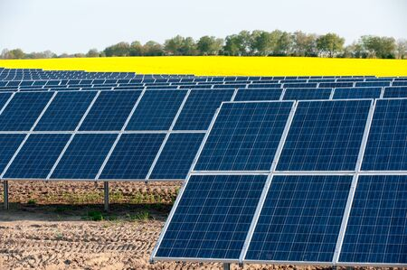Solar panels in a rapeseed field Stock Photo - 13530936