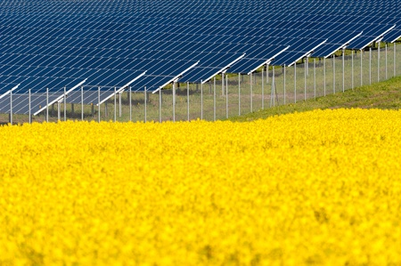 Solar panels in a rapeseed field Stock Photo