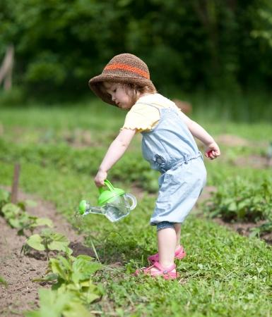 Little girl is watering vegetable plants