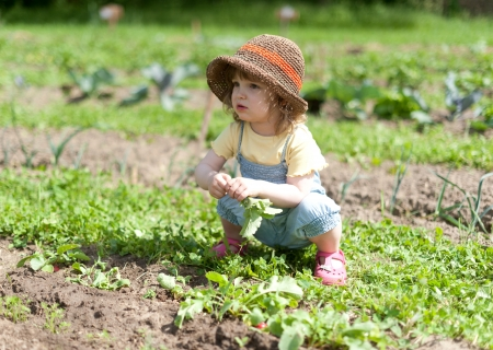 Little girl in vegetable patch Stock Photo