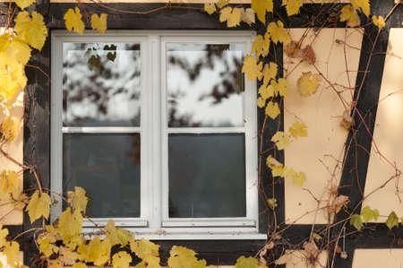 quartered: Window Stock Photo