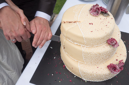 Couple cuts on wedding cake together photo