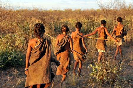 Kalahari, Botswana - December 31, 2008: Bushmen in the Kalahari desert walking in a line