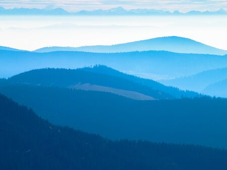 alpen: Panorama Black Forest with Alps early at morning