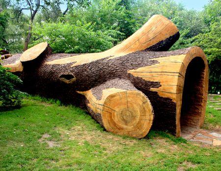 boom kappen: gebroken tree