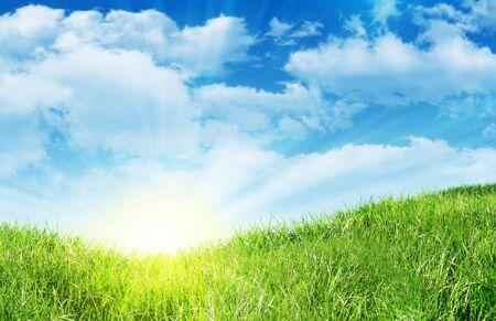 landsape: green grass on a landsape