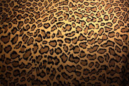 leopard skin Stock Photo - 6070457
