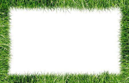 Frame grass Stock Photo