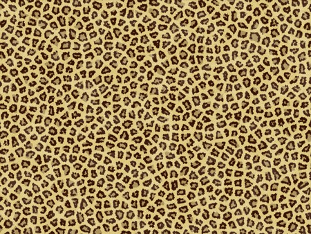 Leopard skin photo
