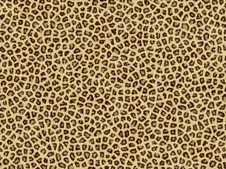 guepardo: Piel de leopardo  Foto de archivo