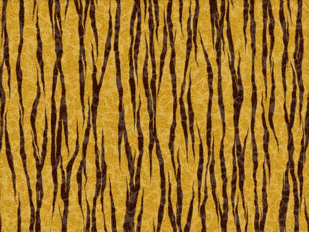 Tiger skin Stock Photo - 7717568