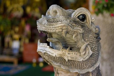 Dragon head photo