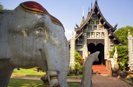 Wat Lok Malee in Chiang Mai, Thailand, elephant photo