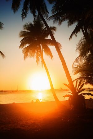 tropical sunset in the island photo