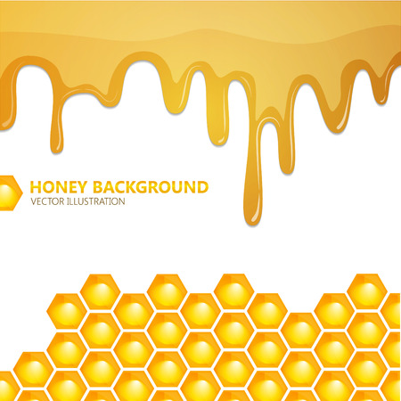 Honeycomb with honey. Vector background. Illustration