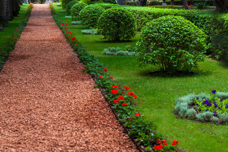 Several Flat Bushes In The Sunny Garden Stock Photo, Picture And ...