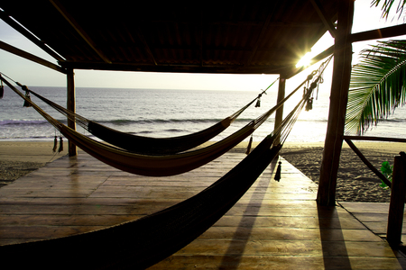 hammock in sunshine beach photo