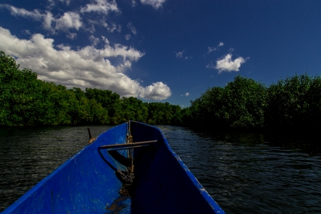 boat in tropical river photo