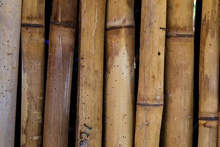 photography of natural bambu texture  Imagens