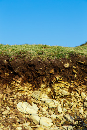 grass erosion photo