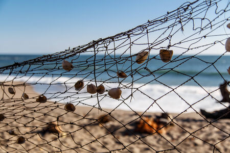 fishing net in beach with shells Imagens