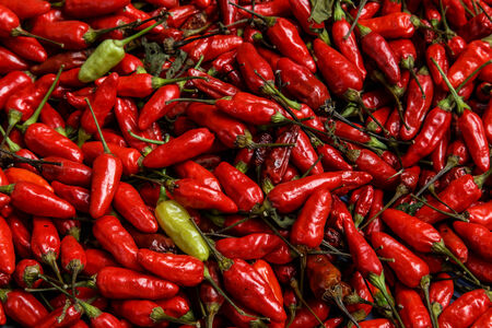 red spicy chili group photo