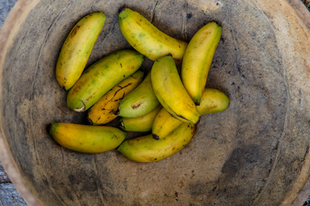 small group: closeup small group bananas in a rustic pot